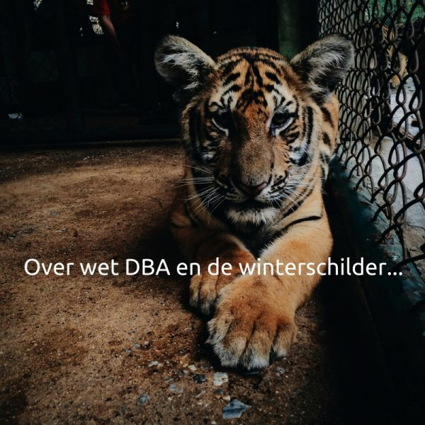 Over wet DBA en de winterschilder