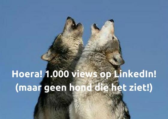 1.000 views op LinkedIn maar geen hond die het ziet
